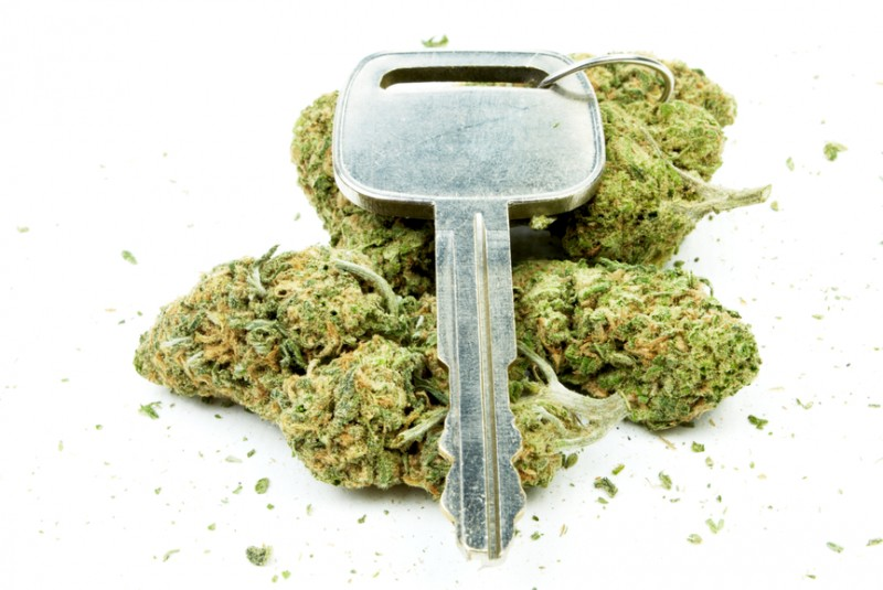 CO Troopers Try Out Pot Saliva Testing Devices to Assess Motorists for THC Impairment