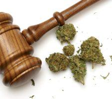 Racial Discrimination as a Defense for Marijuana Arrests | Boulder DUI Lawyer
